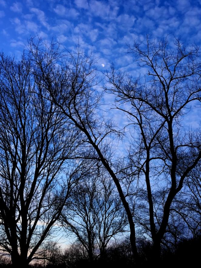 blue-sky-moon