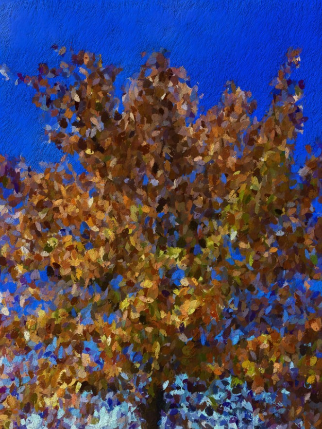 cemetary-tree