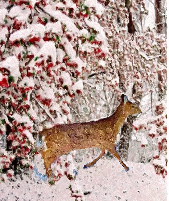 late-winter-deer