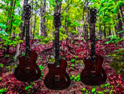 Guitar Forrest